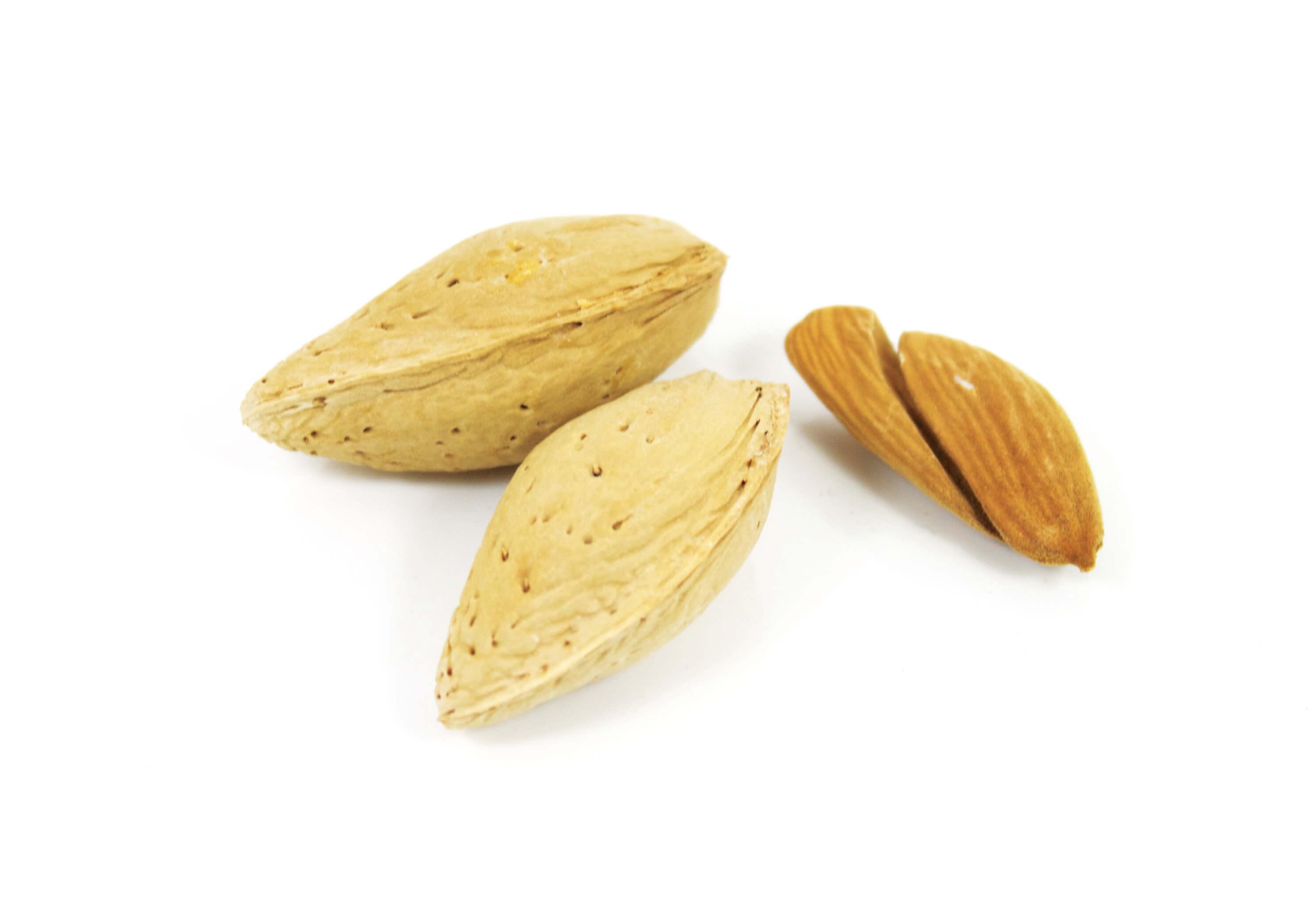 Almonds Mamra