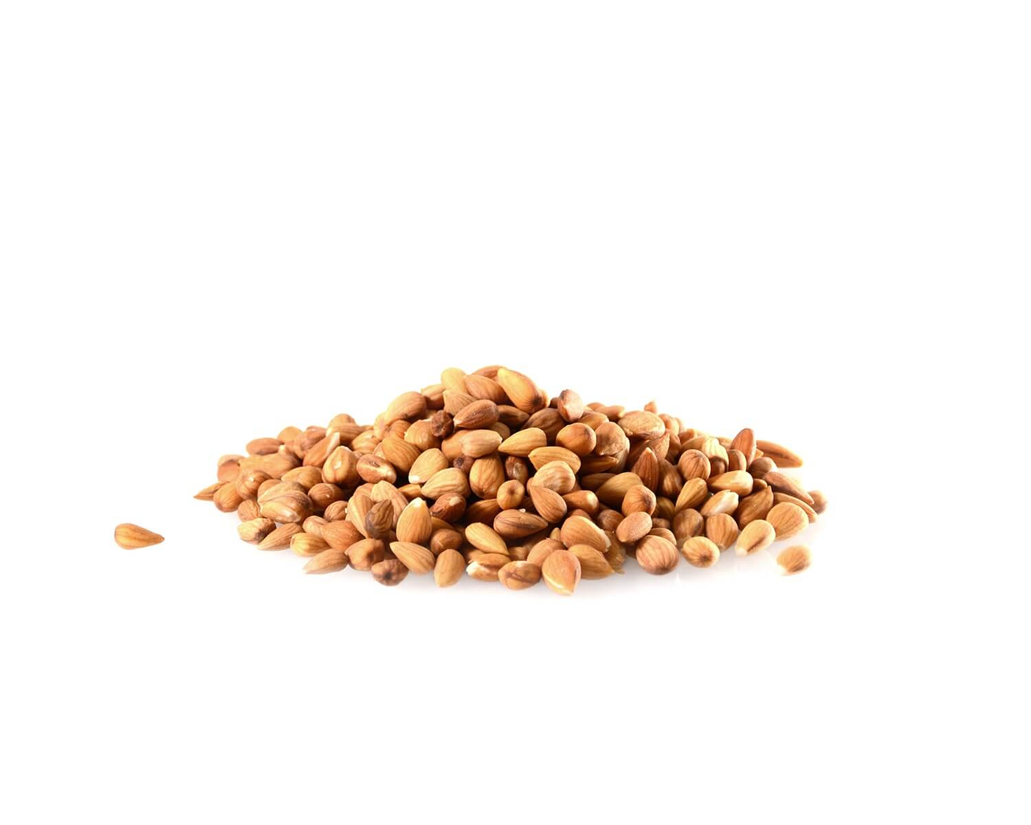 Mountain Almond