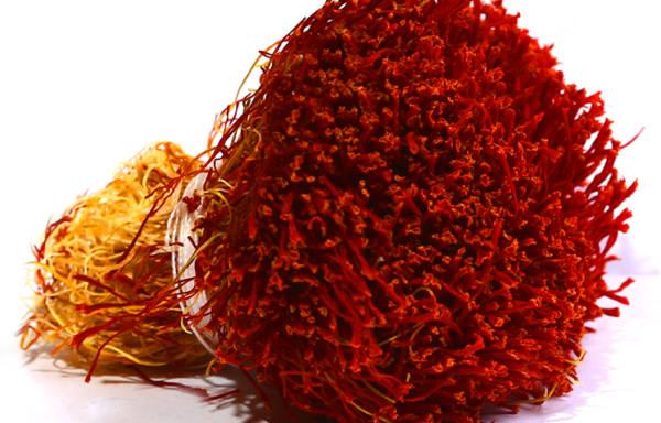 Dasteh Saffron